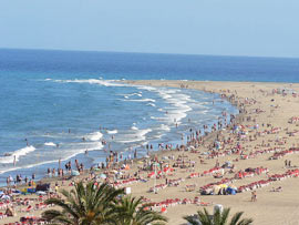 Playa Del Ingles Hotel Mit Hund